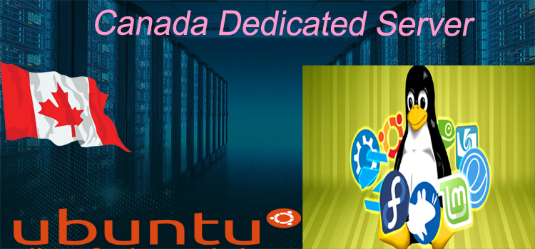 Canada Dedicated Server – Fulfill Your Hosting Needs
